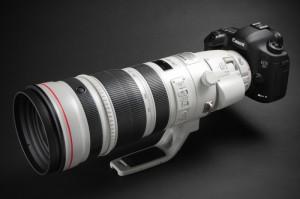 EF 200-400mm F4 L IS USM エクステンダー 1.4×(デジカメWatch)