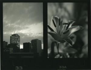 中島恵美子写真展「対立と調和の先にあるもの。」