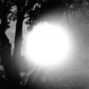 大泉光一写真展「光」
