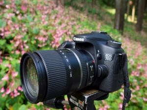 16-300mm F:3.5-6.3 Di II VC PZD MACRO