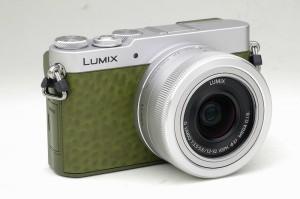 LUMIX GM5