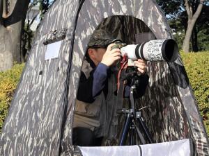野鳥撮影用のカモフラージュテント