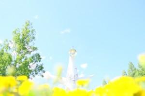 Vol.5 大阪府|蛍に会いたくて&大阪満喫の旅