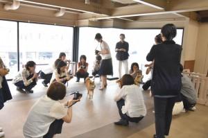 犬の撮り方教室 by SIGMA
