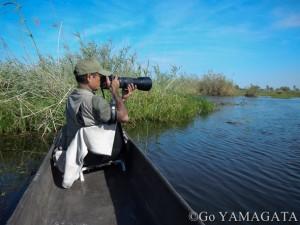 山形豪・自然写真撮影紀