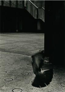 中島恵美子写真展