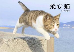 五十嵐健太写真展
