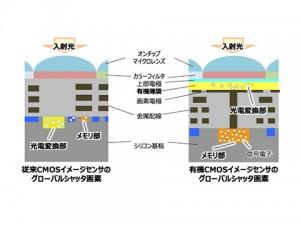 有機CMOSイメージセンサーのグローバルシャッター画素(右)